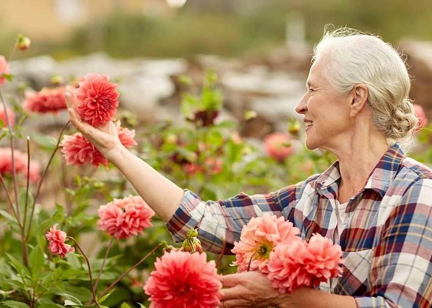 Os benefícios do contato com a natureza para os idosos