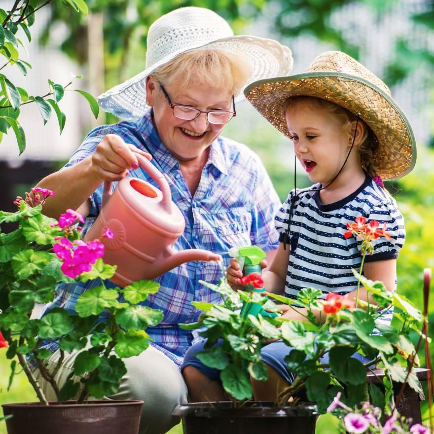 Jardinagem: mais do que hobby para idosos